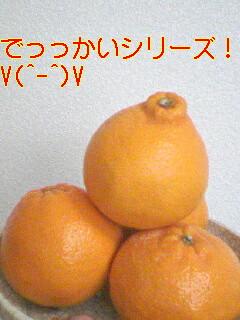 080222_1159~01.jpg